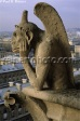 Gargoyle Notre Dame de Paris France ��� Paul Reinert